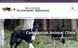 Kilcoyne Veterinary Services