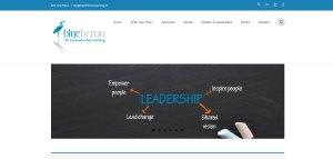 Blue Heron Leadership Coaching